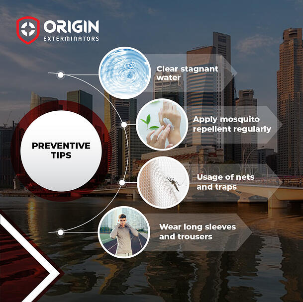 How to Prevent Mosquito Bites and Health Risks?