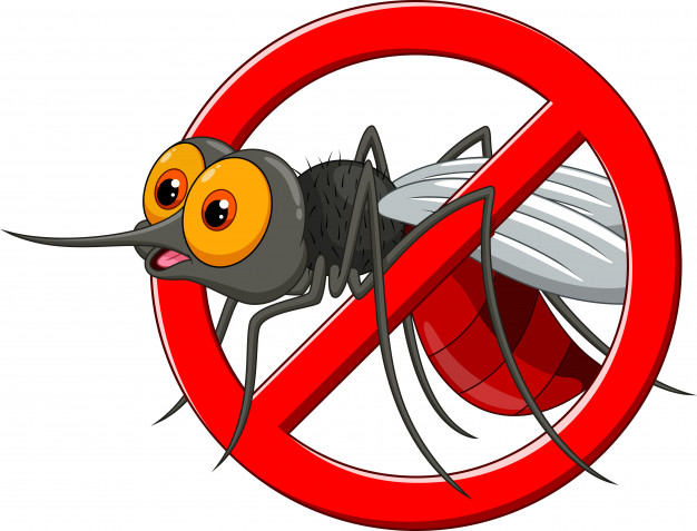 How To Get Rid of Mosquitoes Inside the House?