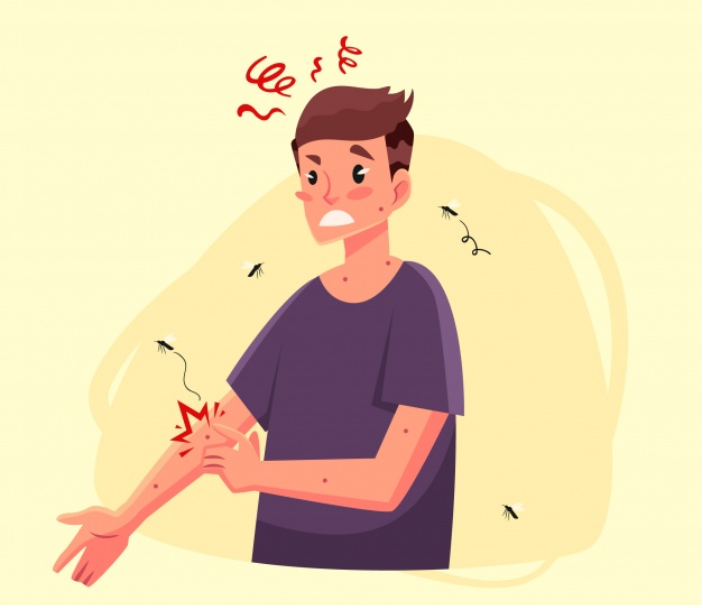 How Can You Protect Your Family From Dengue In Singapore?