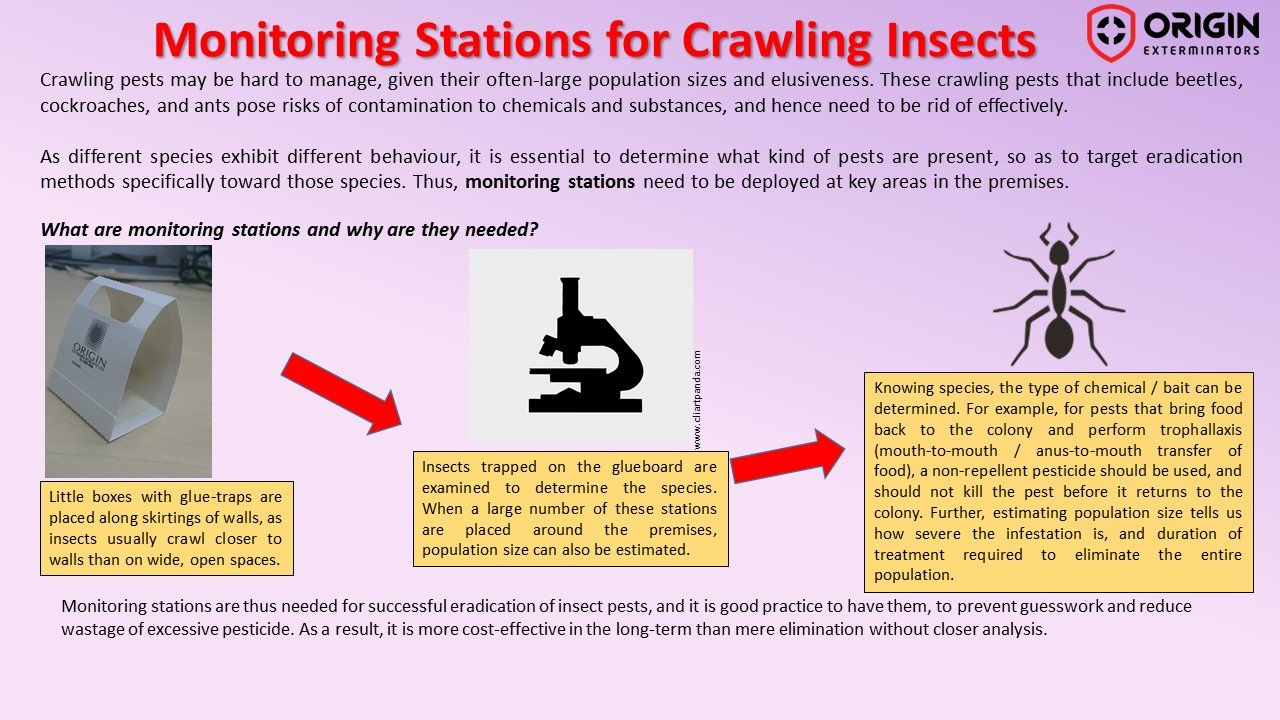Do You Know What's Bugging You?