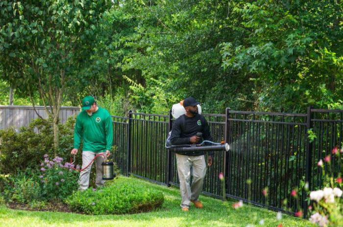 Best Ways to Mosquito-Proof Your Garden